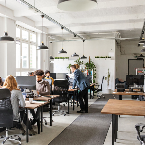 Male and female professionals working at their desks in modern office space