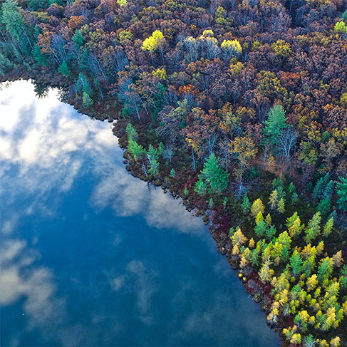 Top view of the blue sky reflected in a lake next to a forest of trees